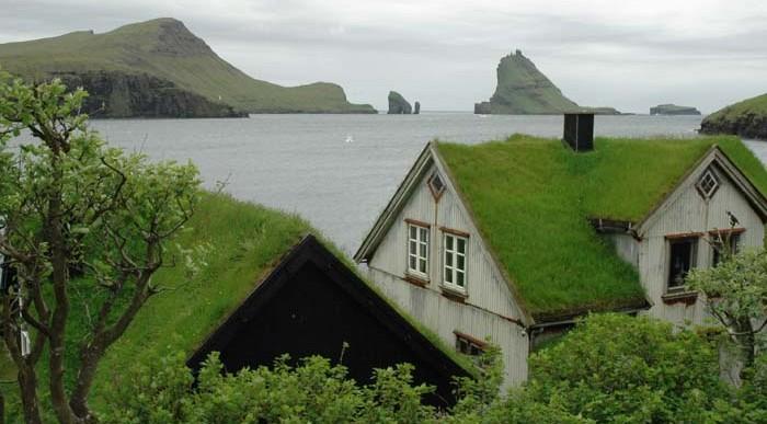 Jak zrobić zielony dach