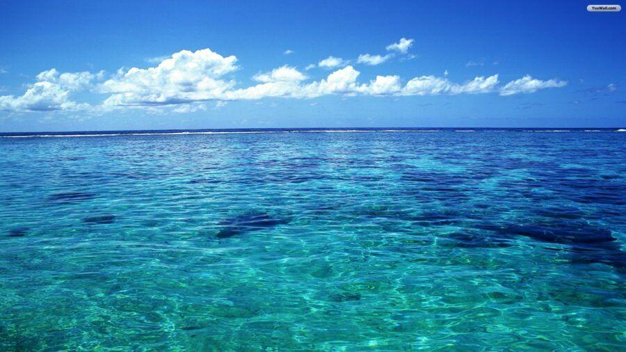 Oceany-zmieniaja-sie-nie-do-poznania