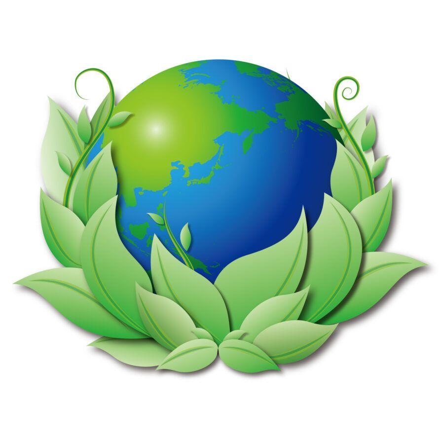 Miejsca-pracy-w-sektorze-ekologicznym
